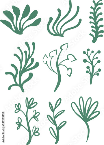 seamless floral pattern elements