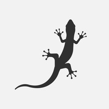 Black Silhouette Of Lizard Isolated On White Background. Vector Illustration.