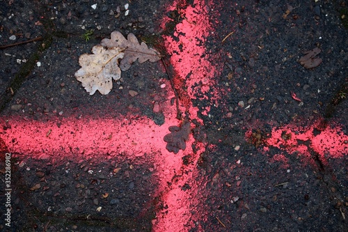 Foto High Angle View Of Leaves On Wet Street During Autumn