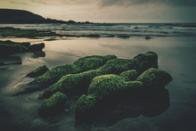 Moss Covered Rocks At Beach