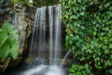 Scenic View Of Waterfall At Singapore Botanic Gardens