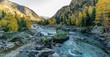 Leinwandbild Motiv Scenic View Of River Stream Amidst Trees In Forest