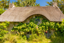 Brittany, Ile Aux Moines Island In The Morbihan Gulf, A Typical Thatched Cottage Off Season, With Roses In The Garden