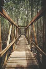 View Along Wooden Footbridge