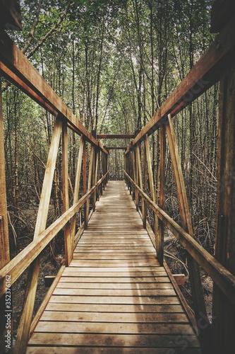 Canvas Print View Along Wooden Footbridge