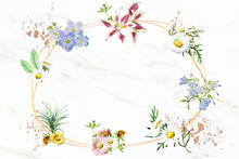 Blank Floral Oval Frame Vector