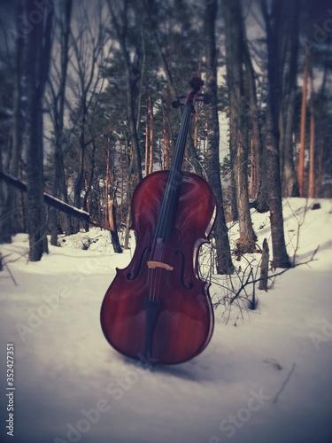 Fotografie, Obraz Cello On Snowcapped Field During Winter