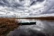 Rzeka Narew. Narwiański Park Narodowy. Polska Amazonia, Waniewo, Podlasie, Polska