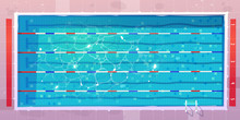 Sport Pool, Top View With Blue...