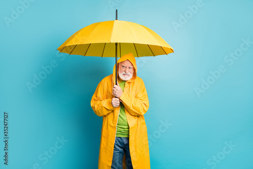 Obraz Portrait of his he irritated annoyed grey-haired man wearing yellow overcoat hiding under parasol bad cold wet weather cyclone isolated over bright vivid shine vibrant blue color background - fototapety do salonu