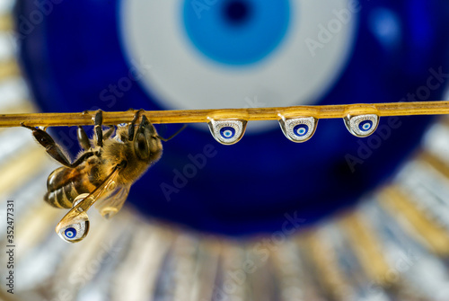Photo special water drop study fictional bee and water drops