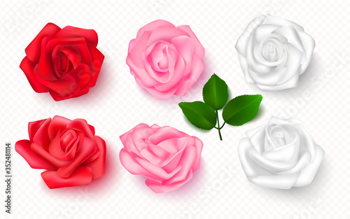 Obraz na plátně Set of rose buds on a transparent background