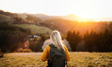 Rear View Of Senior Woman Walking Outdoors In Nature At Sunset, Hiking.