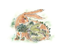 Watercolor Hare Cartoon Red Bunny. Forest Field Farm Gardens Village. Pet Calendar Month Summer. Wildlife Field Landscape. Eared Symbol Of The New Year. Unusual Congratulation June July August May