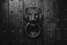 Old Door Knocker With A Lion