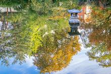Pond In A Japaneese Garden
