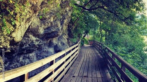Fotografiet Narrow Wooden Footbridge Along Trees