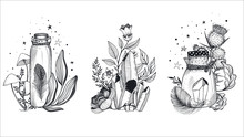 Vector Collection Of Mystical ...
