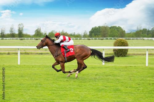 Fototapeta Race horse with jockeys on the home straight. Shaving effect.