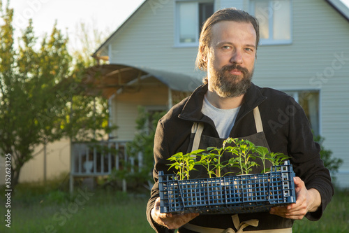man in backyard with seedling plant, gardening concept #352623325