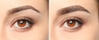 canvas print picture Woman before and after eyebrow correction, closeup. Banner design