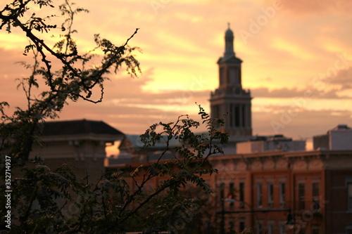 Fototapeta Close-up Of Plant Against St Matthias Roman Catholic Church During Sunset