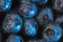 Freshly Picked Blueberries Bac...