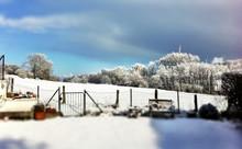 Fence Of Snowy Backyard