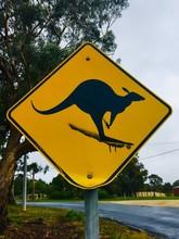 Kangaroo Road Sign In Australia