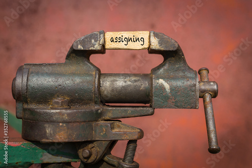 Vice grip tool squeezing a plank with the word assigning Canvas Print