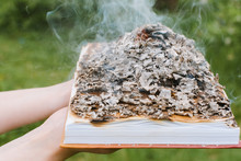 Burning Book In Hands. Books Were Burning In The Forest. Young Girl Holding A Burning Book. A Young Woman In The Woods Burns A Book. Selective Focus