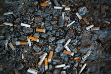 Many Cigarette Butts Lie On Th...