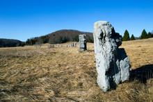 Matic Poljana - Stones As A Mo...
