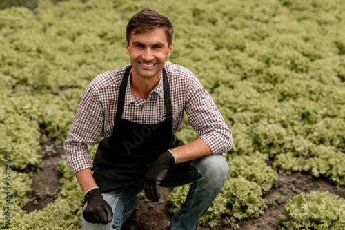 Fotografía Cheerful gardener near lettuce plants