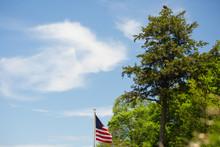 Bald Eagle Perched On Top Of Evergreen Tree Near American Flag Near Lake Michigan