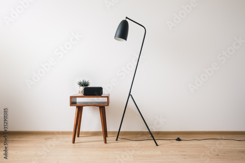 metal floor lamp and wooden coffee table with plant and clock with blank screen Fototapete