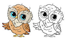Cute Owls Line And Color Vecto...