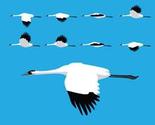 Bird Whooping Crane Flying Car...