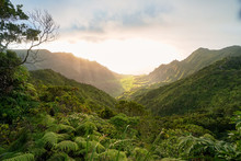Kalalau Valley From Pihea Trail