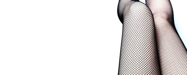 Women's legs in stockings. Top view close-up