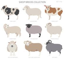 Sheep Breeds Collection 7. Far...