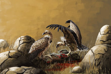 Two Vultures Feast Eating Meat Among Stones. Digital Illustration.