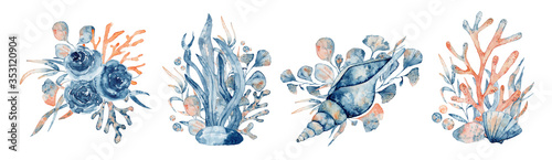 Fotografie, Obraz Watercolor underwater floral bouquet with corals and shells, hand drawn illustra