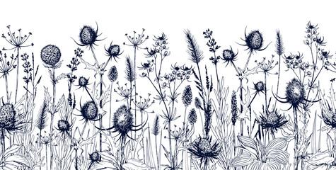 Naklejka Liście Seamless horizontal background with meadow wild herbs and flowers.