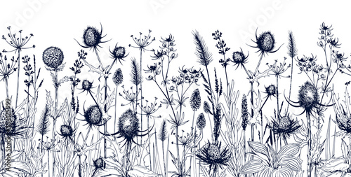 Slika na platnu Seamless horizontal background with meadow wild herbs and flowers