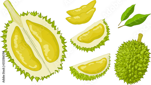 Durian Set Isolated Items - 353186594