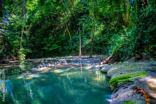Fototapety, obrazy: paisaje de rio en la jungla izabal