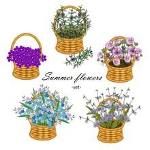 Summer Flower Set. Space, Forg...