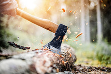 Lumberjack In Checkered Shirt Chops Tree In Deep Forest With Sharp Ax, Detail Of Axe,