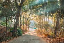 Goa, India. Country Road Throu...